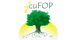 logo-icufop-1